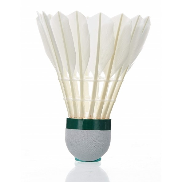Badmintono skraidukai
